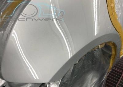 Kotfluegel-metallic-lackiert